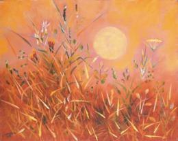 Grasses 1976