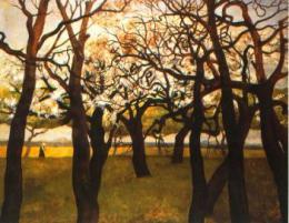 Stromy na jaøe 1952 - zvìtšit obrázek